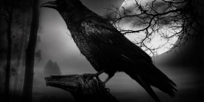 Cuervo 1